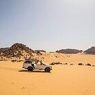 Desert Explorer by Omar Dakhane