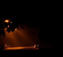 Foggy Streetlight by Photowalker1983