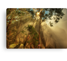 Clearing mist, Mount Buffalo Canvas Print