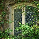 Traditional Window by mlphoto