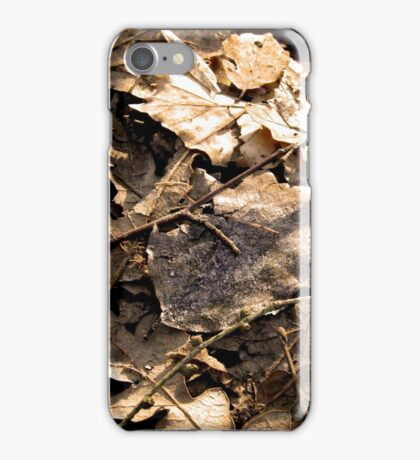 Winter leaves ( leafs ) in Wales iPhone Case/Skin