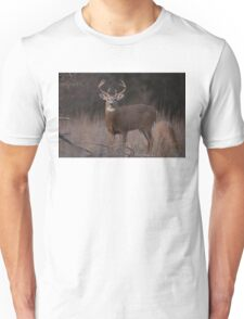 White-tailed deer buck with huge neck in autumn rut T-Shirt