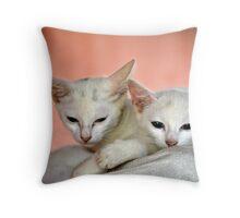 kitties Throw Pillow