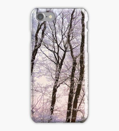 Frost & Pastels iPhone Case/Skin