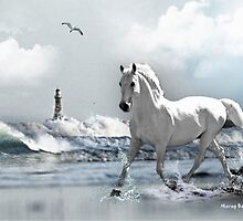 At a Gallop - Roker Pier Sunderland by Morag Bates