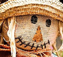 Scarecrow Smile by Nicole a Alley