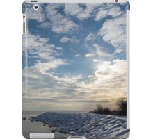 Brilliant Sunshine After the Snowstorm – a Winter Beach on Lake Ontario iPad Case/Skin