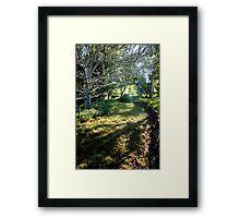 0317  Jenny's Garden Framed Print