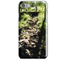 0318  Jenny's Garden iPhone Case/Skin