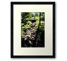 0318  Jenny's Garden Framed Print