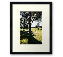 0321  Jenny's Garden Framed Print