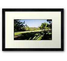 0322 Jenny's Garden Framed Print