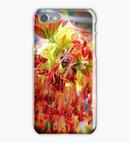 Red Maple blossom iPhone Case/Skin