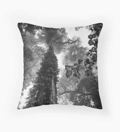 Look up - and up and up! Throw Pillow