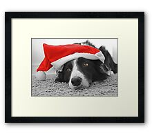 Border Collie Christmas Card - Santa's Little Helper Framed Print