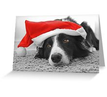 Border Collie Christmas Card - Santa's Little Helper Greeting Card