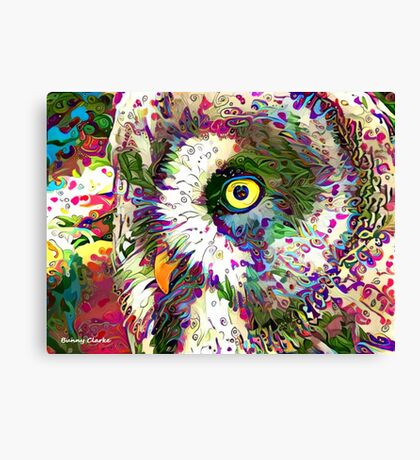 Colors of the Soul Canvas Print