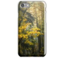 Colors in the Fog ~ Fall Colors ~ iPhone Case/Skin