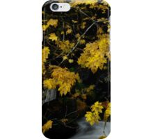 Vine Maple and Water iPhone Case/Skin