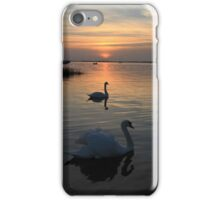 Swans at Sunset iPhone Case/Skin