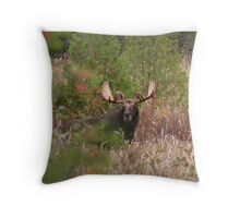 Bull Moose in Algonquin Park, Canada Throw Pillow