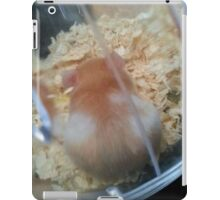 Colour Markings Of Lavender the Hamster iPad Case/Skin