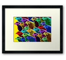 Chick fever IV Framed Print