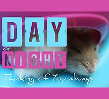 Thinking of You - Hamster 1 - by PBdesigns