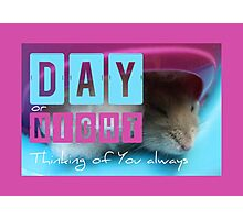 Thinking of You - Hamster 1 - Photographic Print
