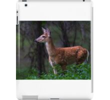 Portrait of a Fawn - White Tailed Deer Fawn iPad Case/Skin