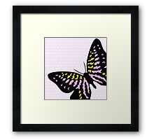 Butterfly Pink Black Yellow Print Framed Print