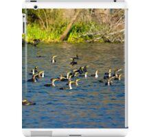 Cormorants Galore iPad Case/Skin
