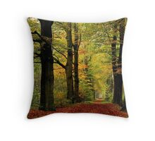 Back to the November lane Throw Pillow