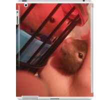 Commander Lavender and Ricky Fitness Jr iPad Case/Skin