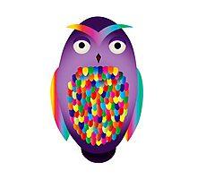 Rainbow Owl Photographic Print