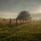 Cade's Cove by J. Day