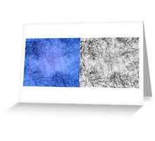 Bare trees branches 4 Greeting Card