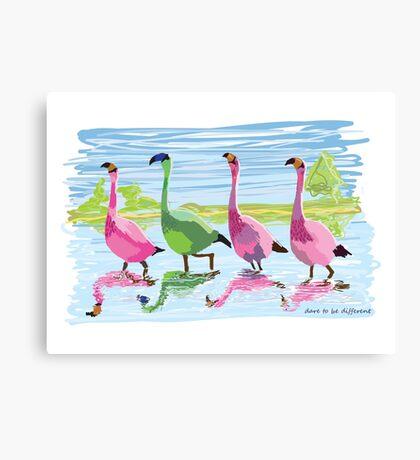 Flamingo dare Canvas Print