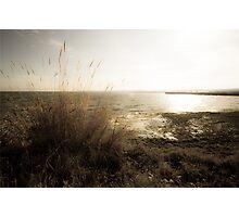 Lake Front Photographic Print