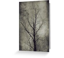 Dark trees 4 Greeting Card