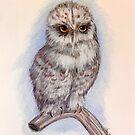 Snow Owl by Alma Lee