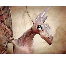 Paper Dragon Photographic Print