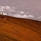 Mauna Kea run by bonsta