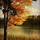 Fall along the lake by vigor
