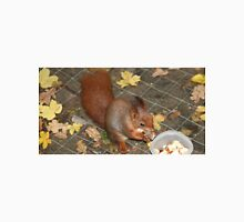 Red squirrel on feeding table at Escot Unisex T-Shirt