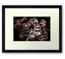 Iron Butterfly - Violet Framed Print