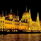 PARLIAMENT HOUSE - BUDAPEST by Raoul Madden