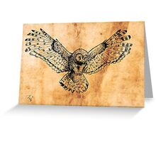 Flying owl digital illustration on old paper texture Greeting Card