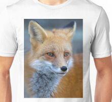 Red Fox - Algonquin Park, Canada T-Shirt
