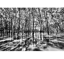 He who has crossed the flood knows how deep it truly is... Photographic Print